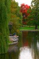 Study Time - Boston Public Garden