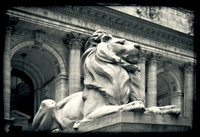 The Sentry - NYC Public Library