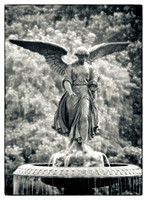 Angel of the Waters - Central Park, NY